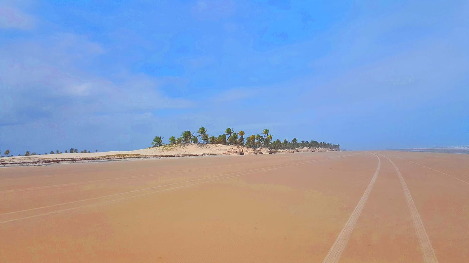 Passeio de buggy pela praia em Mangue Seco.