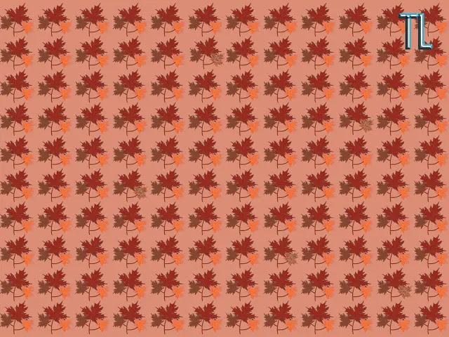 encuentra las 5 hojas diferentes