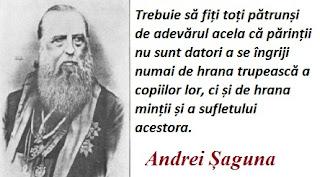 Maxima zilei: 20 decembrie - Andrei Șaguna