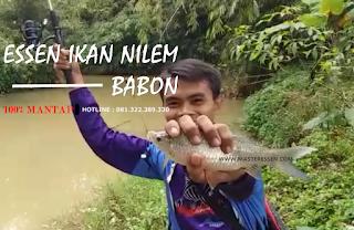 Essen Ikan Nilem Khusus Babon