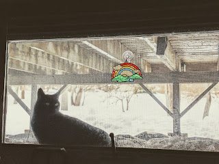 Black Cat In The Snow Looking Into Window