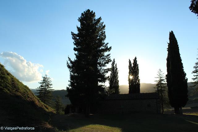 Casentino, Arezzo, Toscana, Italia