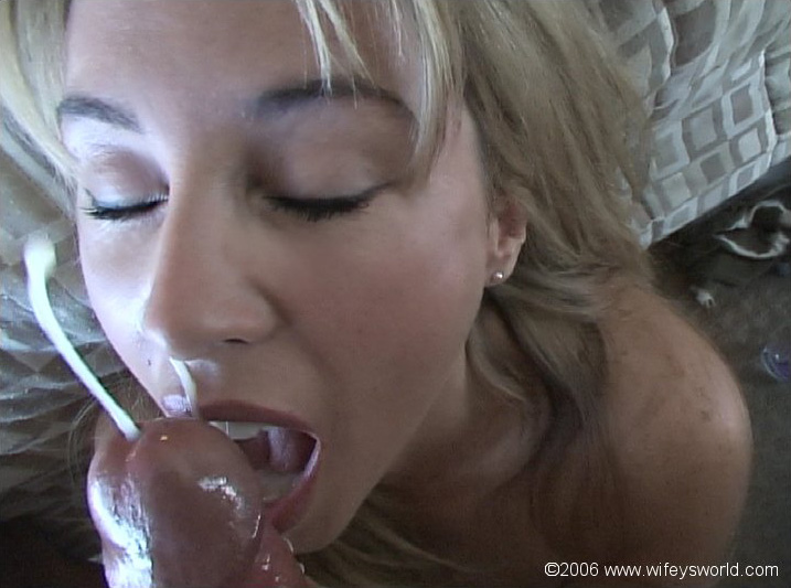 Pity, that Wifey world sucking cock due