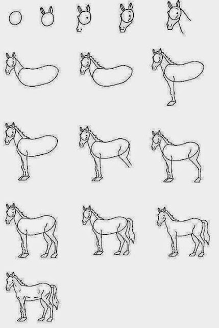 Cara menggambar kuda sketsa dengan pensil