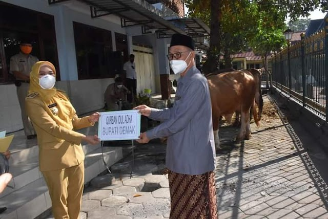 Bupati Demak Serahkan 2 Ekor Sapi Qurban Jelang Idul Adha 1442 H di Masjid Agung Demak