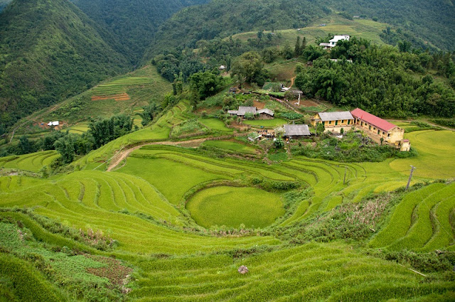Which month is the best to trek in Sapa?