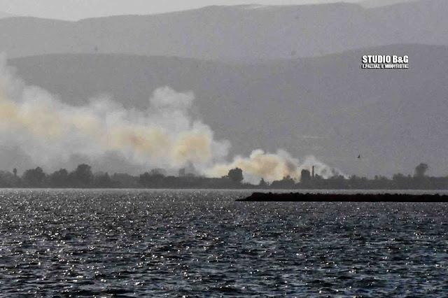 Πυρκαγιά στη Νέα Κίο  - Ορατός ο καπνός από το Ναύπλιο