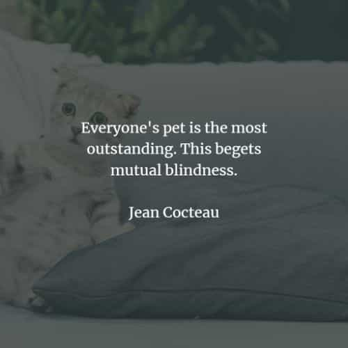 Pet quotes and sayings that inspire a love for animals