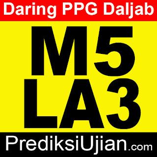 Jawaban Formatif M5 LA3 Profesional - Graphic Organizer