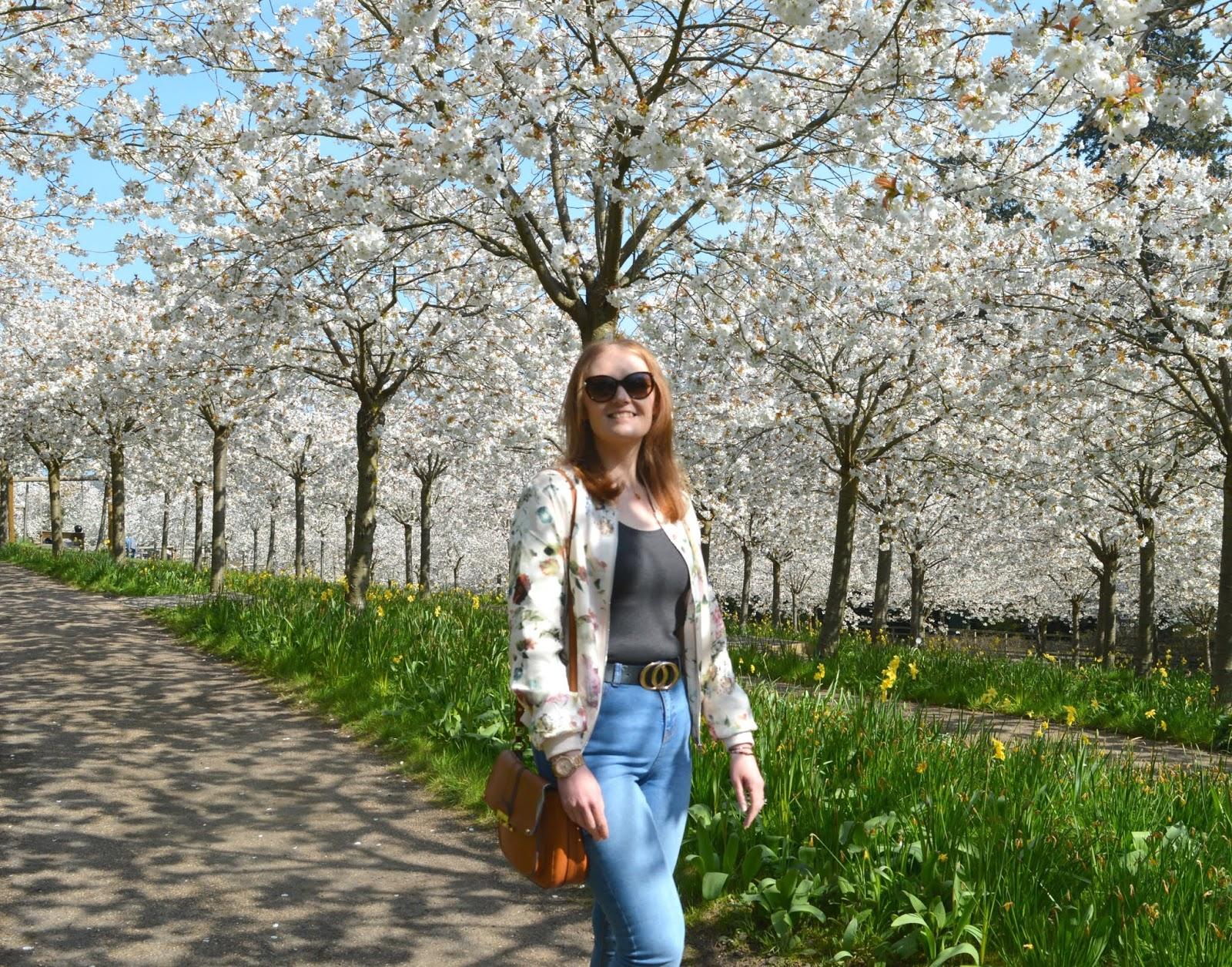 Blossom Orchard Swing Alnwick Garden