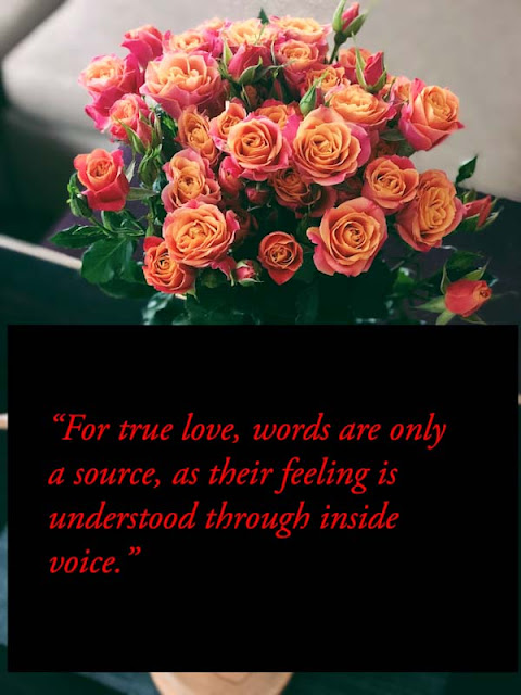 Real and true love quotes