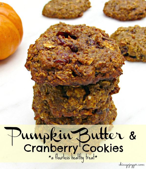 Chicago Jogger: Pumpkin Butter & Cranberry Cookies