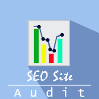 Audit SOE