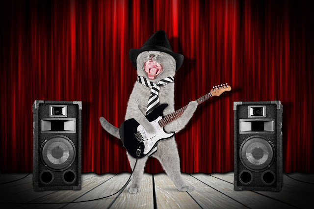 A rock star cat playing guitar and singing