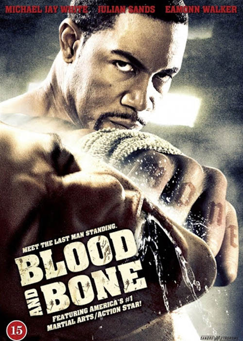 Blood And Bone (2009) Hindi Dubbed Full Movie Download Free