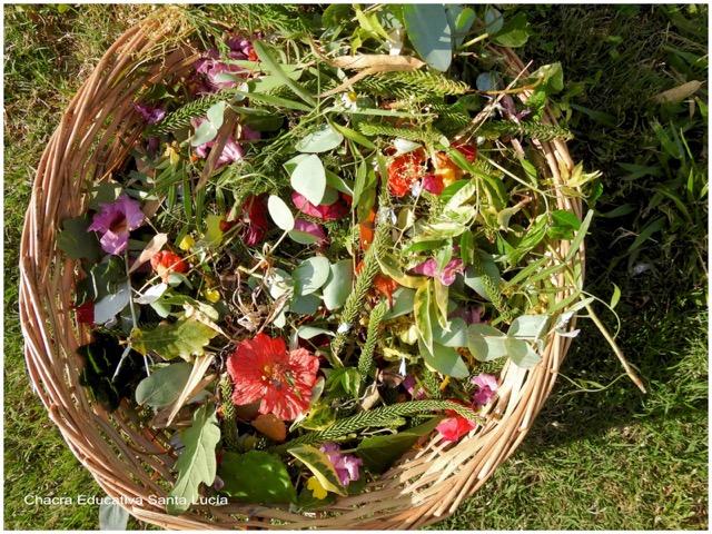 Canasta con flores y hojas - Chacra Educativa Santa Lucía