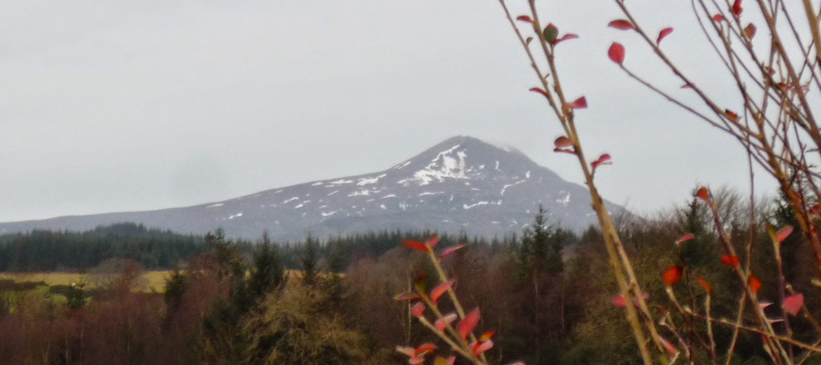 Ben Lomond - Beacon Mountain - Scottish Highlands