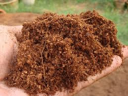 BENEFITS OF COCONUT FIBER OR COCOPEAT
