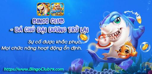 Bingo Club - Bá Chủ Đại Dương khắc phục sự cố