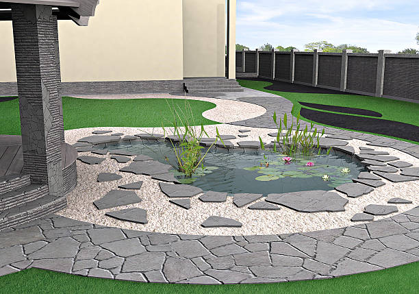 Backyard Fish Ponds – A How To Approach