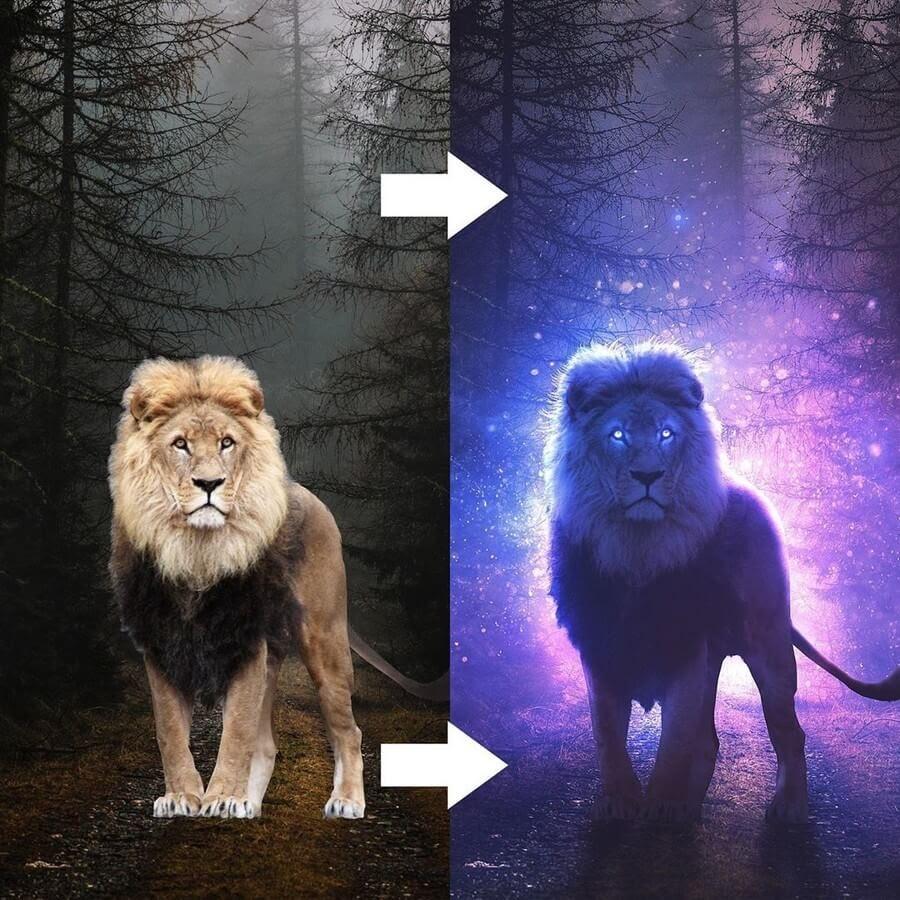 04-Lion Super-powered-Kevin-Carden-www-designstack-co