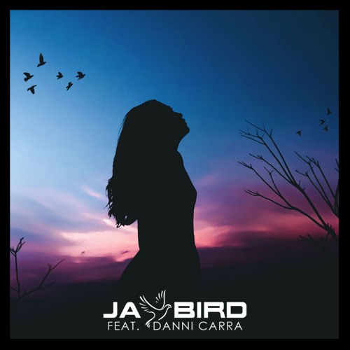 Jay Bird Unveils New Single 'Let You Down' ft. Danni Carra