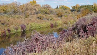 Saskatchewan, historical, landscape