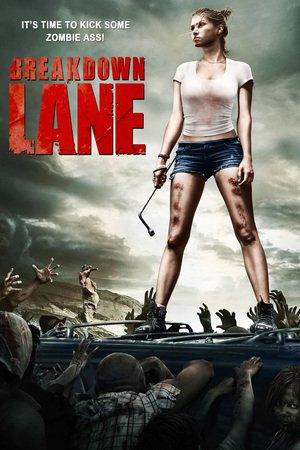 Poster Breakdown Lane 2015