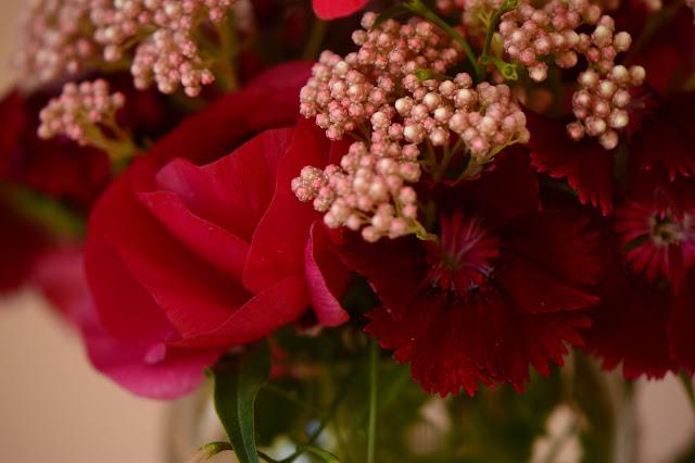 monday vase, ranunculus, cutflower, ozothamnus, ranunculus, dianthus, small sunny garden, desert garden, amy myers