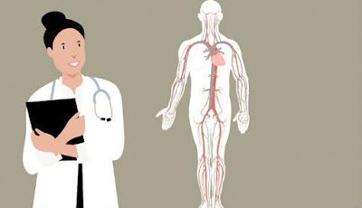 Kesehatan tubuh