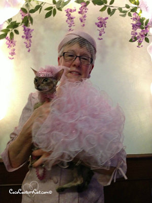 Coco, the Cornish Rex and Teri at the Wigglebutt Wedding