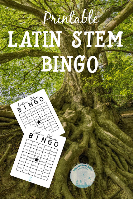 Latin Stem BINGO is a Hands-on Way to Improve Vocabulary