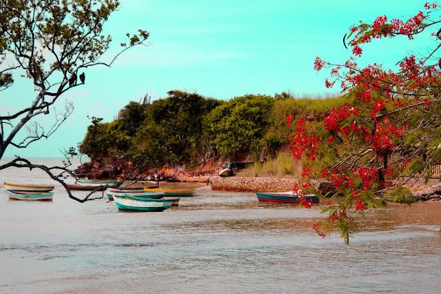 Praia da Gorda, Armação dos Búzios, Búzios, Região dos Lagos RJ, Vanessa Vieira, Praias, Pensamentos Valem Ouro