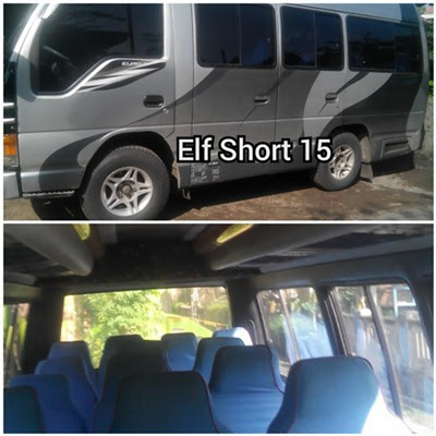 Carter Elf Short Blitar