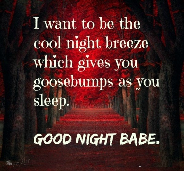Good Morning and Good Night SMS, Morning Wishes, Good Night