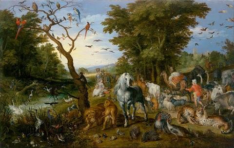 Relats conjunts, Entrant a l'Arca de Noè