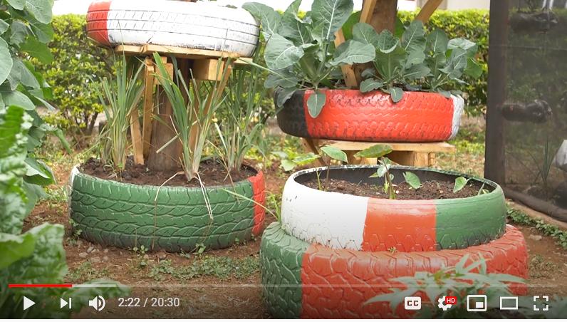 Tire kitchen garden