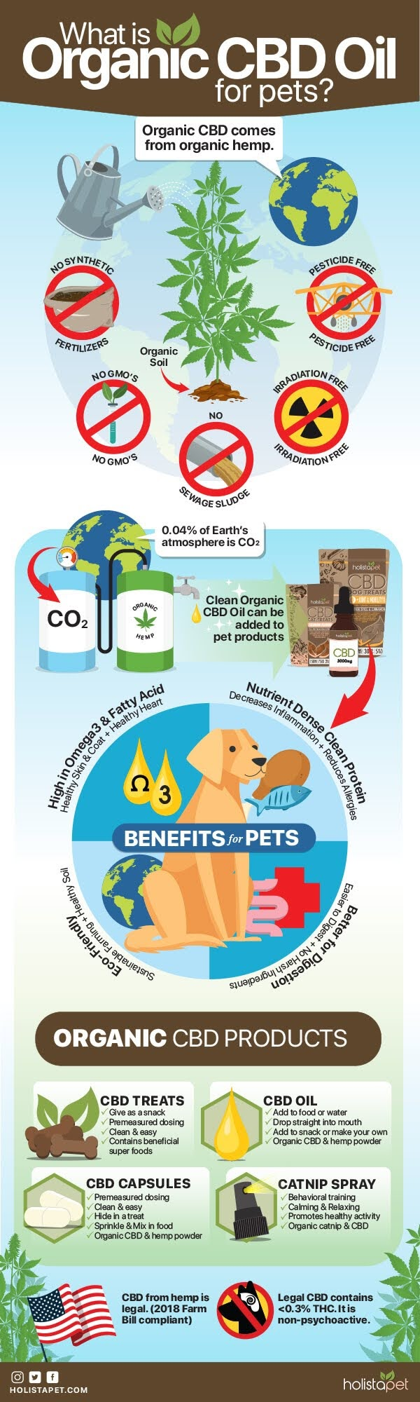 What is Organic CBD Oil for Pets? #infographic