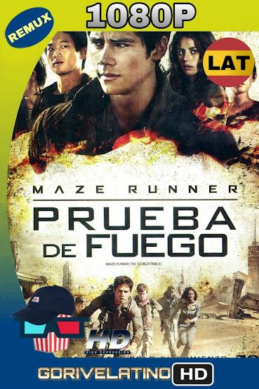Maze Runner: Prueba de Fuego (2015) BDRemux 1080p Latino-Ingles MKV