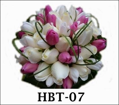 hbe-17
