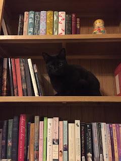 Bookcase livestock