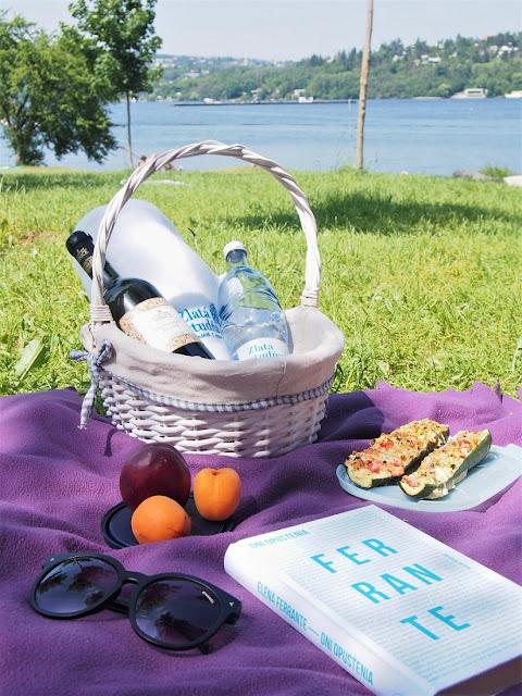 brnenska priehrada piknik zlata studna vino ovocie kniha