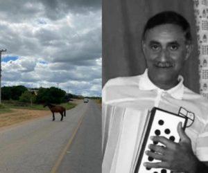 Cavalo atravessa pista e mata sargento da PM no Sertão do Pajeú
