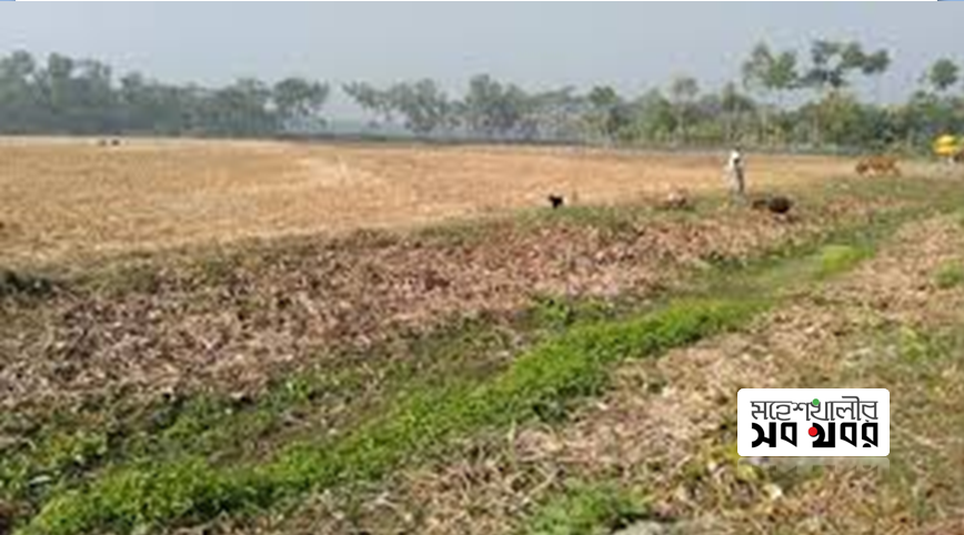 মহেশখালীর কালিগঞ্জ মৌজার জমির মূল্য নির্ধারণে বৈষম্য, সংশ্লিষ্টদের হস্তক্ষেপ কামনা ::