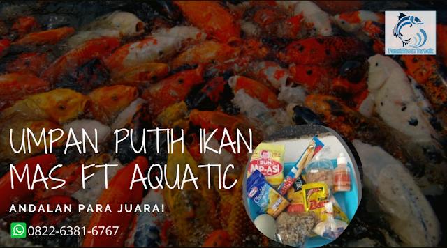 Cara Meracik Umpan Putih Ikan Mas Jitu Dengan Aquatic Essen Kaskus
