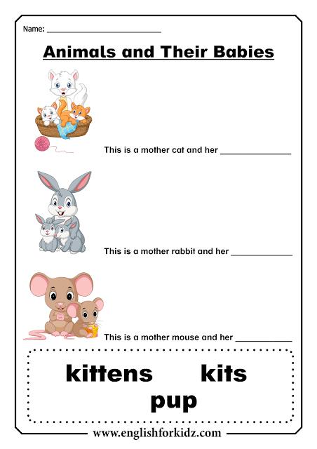 Baby animals ESL printable worksheets for kids