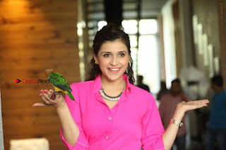 Actress Mannar Chopra in Pink Top and Blue Skirt at Rogue movie Interview  0228.JPG