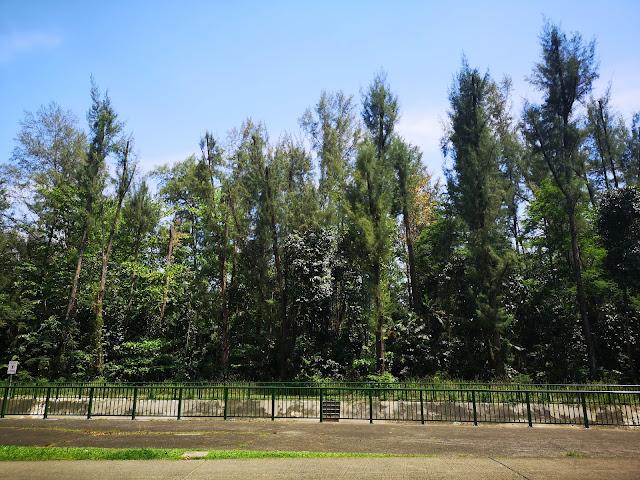 East Coast Park near Fort Road