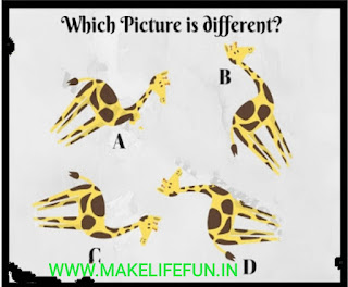 Picture puzzles with Answer for teens,Pictures Brain Teasers and Answers for teen and kid,Akbar Birbal puzzle,  Logic puzzles,Chatpati Paheliyan, english riddles, hindi riddles, Hindi Paheliyan with Answer, Hindi riddles, Paheliyan in Hindi with Answer, हिंदी पहेलियाँ उत्तर के साथ, Funny Paheli in Hindi with Answer, Saral Hindi Paheli with answers, Tough Hindi Paheliyan with Answer, Hindi Paheli, math riddles,fruit riddles, math paheli with Answer, math paheli, whatsapp paheli, whatsapp, riddles, Paheli in Hindi, Hindi paheliyan for kids, Math Riddles in Hindi For Kids, Paheliya in Hindi For Kids,  Mind Puzzle, genius puzzles, picture brain teasers and Answers, mathematic puzzle, tricky puzzle, amusing riddle, cool puzzles, different puzzles, nature paheliya, tree puzzle, hinden face puzzle Hindi paheliya with answer, english riddles, baccho ki dilchaps paheliya, WhatsUp puzzles, guess the emoji, coin puzzles explanation in hindi, english riddles in 2021, old song games, Superhit songs puzzles, science puzzle, education puzzle, IQ test questions, Gk current affairs question, what i m, story, jasusi Paheliyan,   Hindi Paheliyan with Answer, Hindi riddles, Paheliyan in Hindi with Answer, हिंदी पहेलियाँ उत्तर के साथ, Funny Paheli in Hindi with Answer, Saral Hindi Paheli with answers, Tough Hindi Paheliyan with Answer, Hindi Paheli, math riddles,fruit riddles, math paheli with Answer, math paheli, whatsapp paheli, whatsapp, statements riddles., story, court,