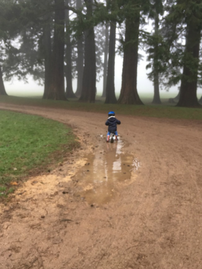 Our-Weekly-Journal-30th-Jan-2017-toddler-on-bike-riding-through-puddler-in-fog
